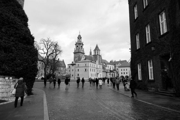 Wawel catsle