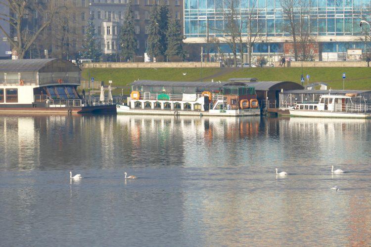 Flod krakow